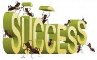fourmis-succes-7338106_s
